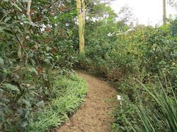 Soft path surfaces