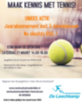van Tennis Classes Coaching Camp Flyer