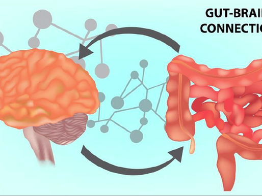 The Gut-Brain Connection: Nutrition's Role in Mental Health