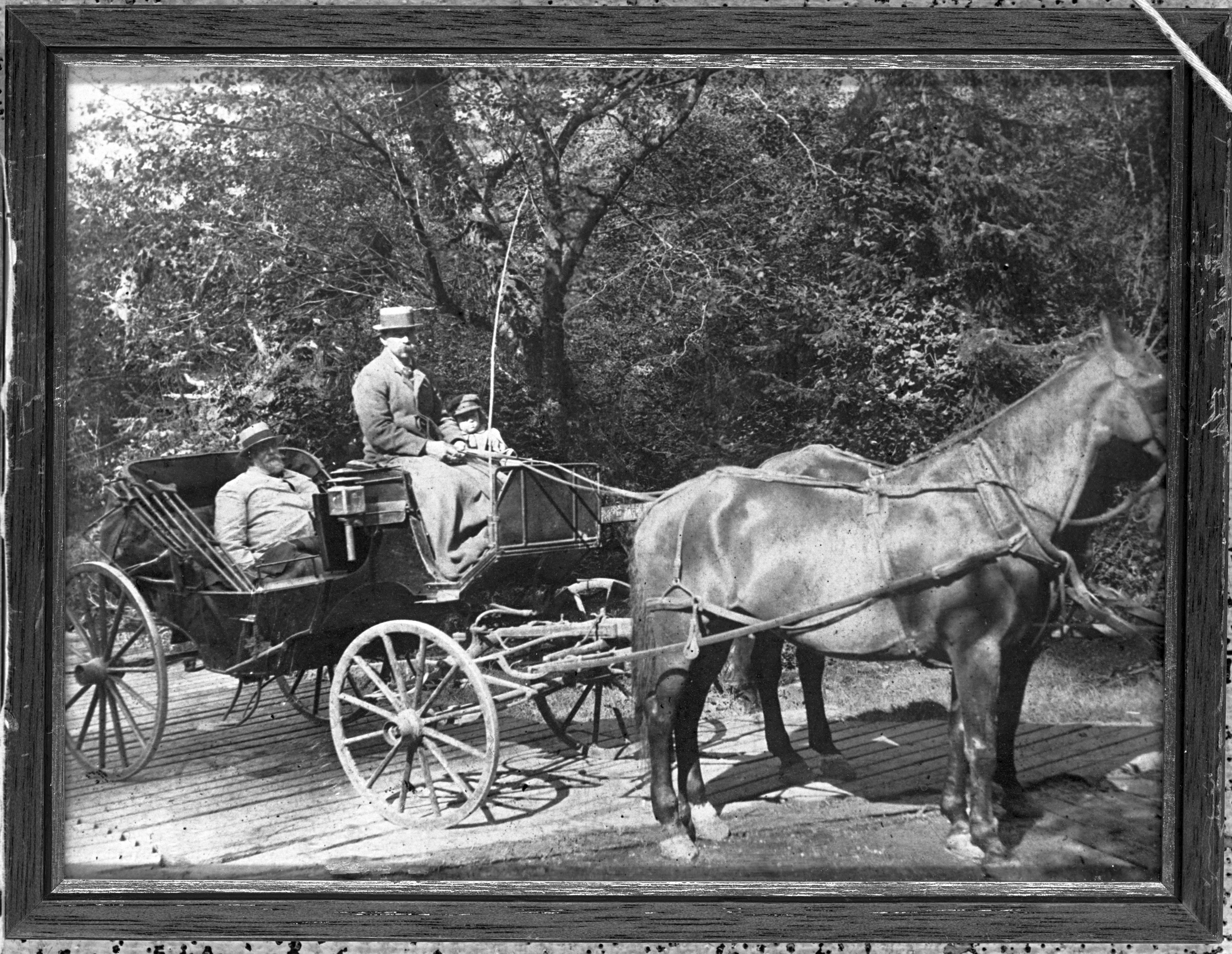 William S. Ladd in Carriage