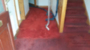 Carpet Cleaning (2).jpg