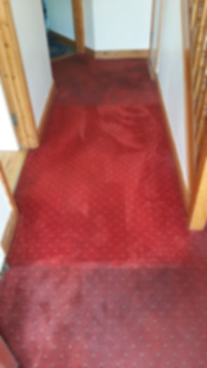 carpet cleaning kildare.jpg