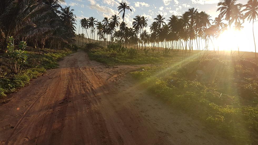Litoral Sul do Alagoas