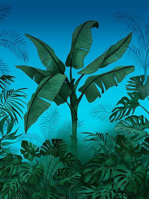 Ilustração Selva