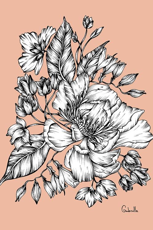 Amica Color Illustration