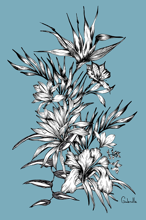 Lindsey Color Illustration