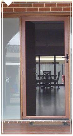Clearview Security Door