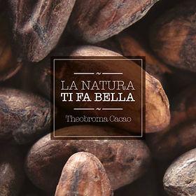 秘魯皮烏拉高地可可豆—全球最優質、罕有的100%純種可可豆,其精華萃物蘊含豐富活胜肽、醣類、多酚類,能促進膠原蛋白、蛋白聚糖和彈性蛋白的增生!