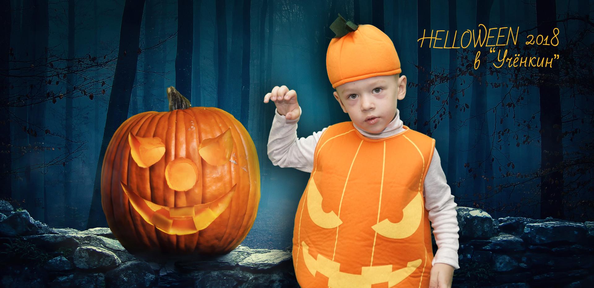 Halloween_Pumpkin_452075.jpg