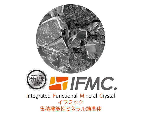 fig-ifmc.jpg