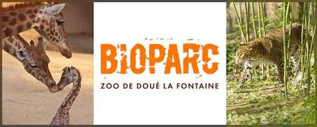 Bioparc DouÇ.jpg