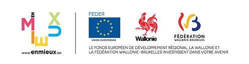 logo_FEDER+wallonie+FWB.jpg