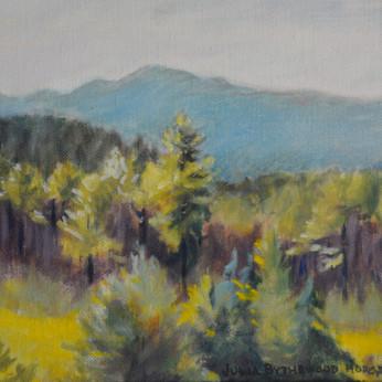 Montana Window View 8 x10 SOLD