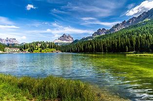 green-trees-near-lake-under-blue-sky-399