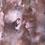 Thumbnail: «Naturens vekster»