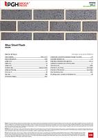 Blue Steel Flash Technical Details.png