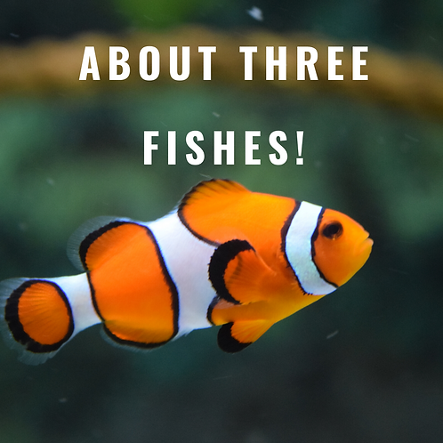 About Three Fishes!
