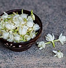 jasmine petals in bowl.jpg