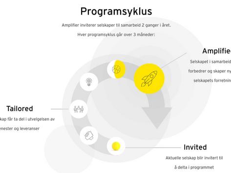 EYs akseleratorprogram