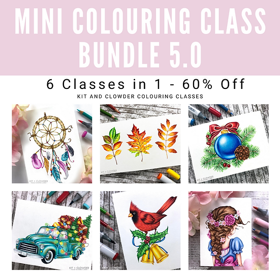5.0 Mini Class Bundle - 6 Classes in 1