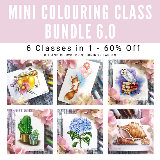 6.0 Mini Class Bundle - 6 Classes in 1