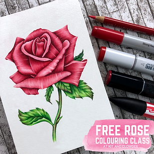 Free Rose Class.png