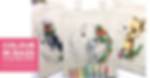 Copy of COLOUR IN BAGS.png
