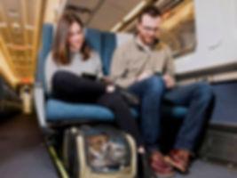 Photo, happy train passengers