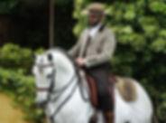 horseXperiences lusitano.jpg