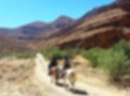 horsexperiences Morocco.jpg