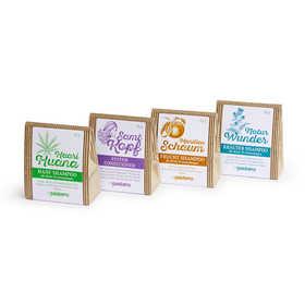 Pastarro Shampoo-Etiketten