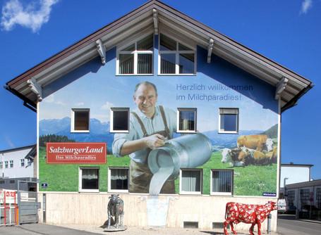 SalzburgMilch - vormals SalzburgerLand Milchparadies
