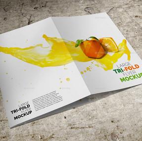 Large Trifold Brochure Mockup 01.jpg