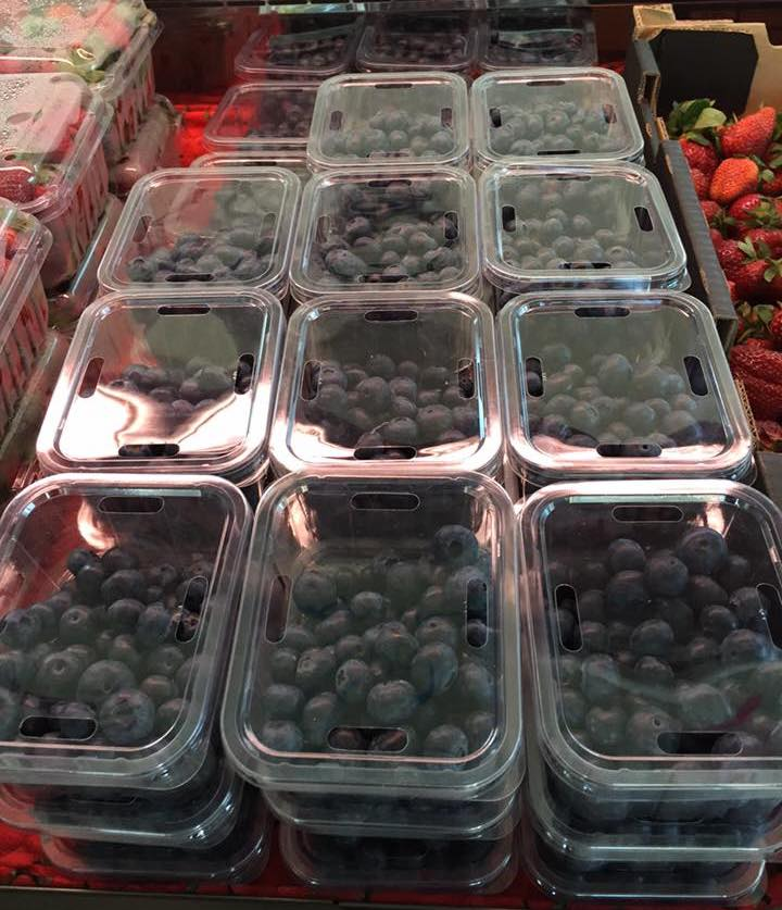 Fresh WA Blueberries