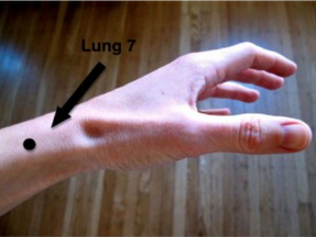Boost Your Immune System With This Key Acupoint! Introducing Lung 7 or Lieque in Chinese.