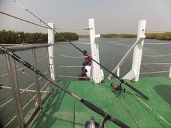 Lazy Day Fishing