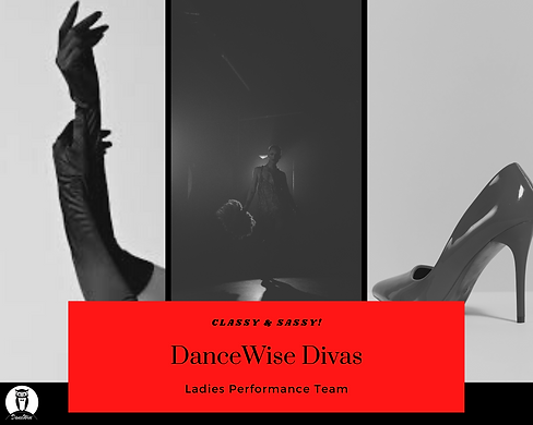 DanceWise Divas New Picture.png
