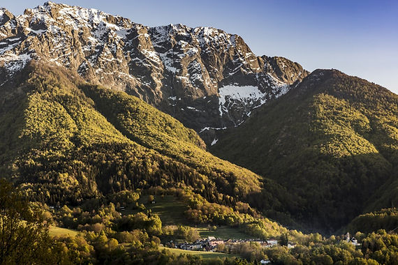 S37 - Sviluppo progetto Camping Alpino a Palagnedra: creazione e gestione