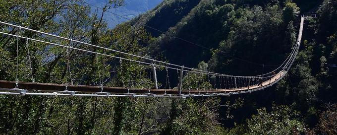 """S17- Costruzione di un ponte """"tibetano"""""""