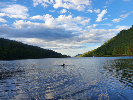 Guided Wild & Open Water Swimming