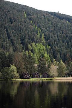 The Triangle Lodge.jpg