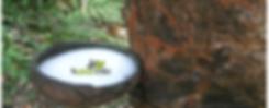 Natuelle Organic Beds, Certified 100% Organic Latex