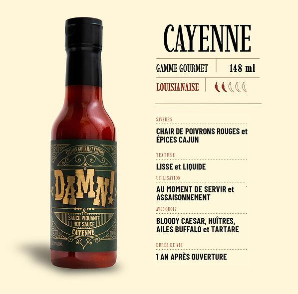 Cayenne-Fiche-f.jpg