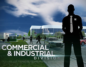 Commerical Security Provider