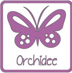 Flex orchidee A0062