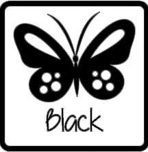 matte vinyl zwart