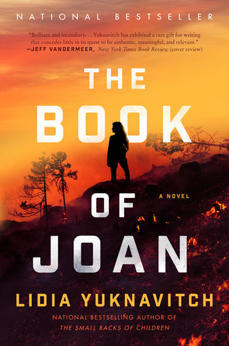 website cover - book of joan.jpg
