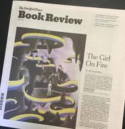website cover - new york times book revi