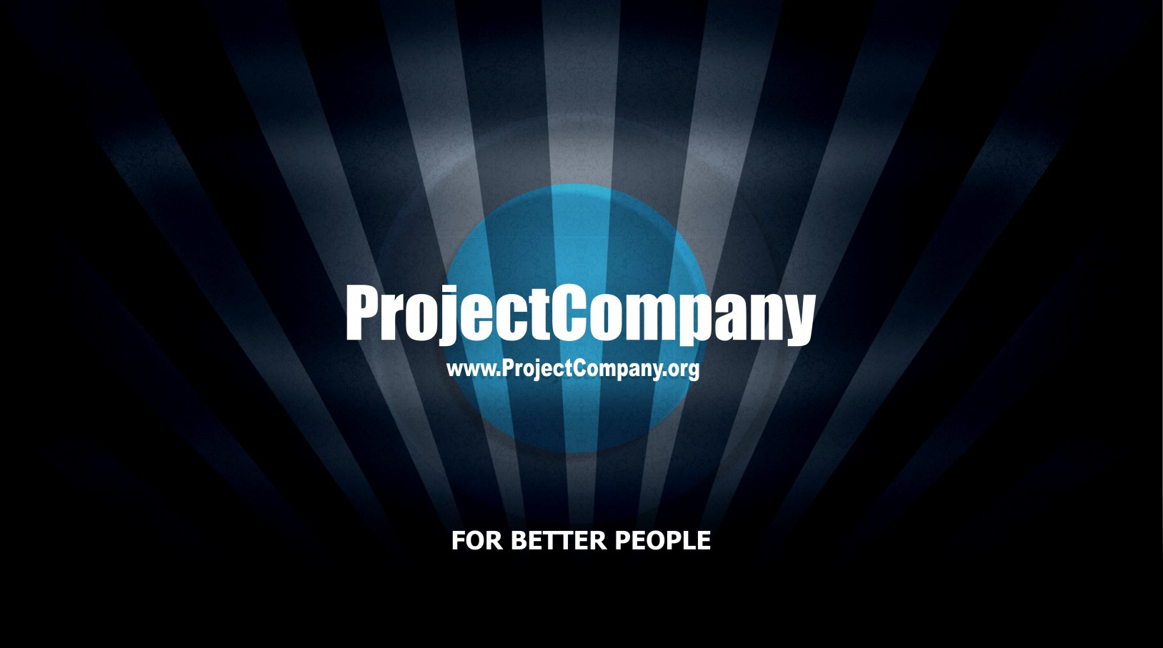 Project Company