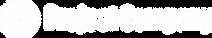 Project Company Logo Branco.png